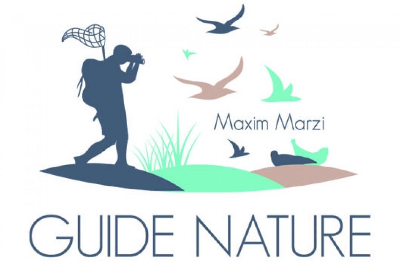 maxim_guide_baie_de_somme_picardie6