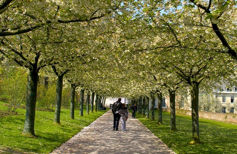 PNAPIC0800010832_Jardins de Valloires_Somme_Picardie ® CRTP-ba (2)