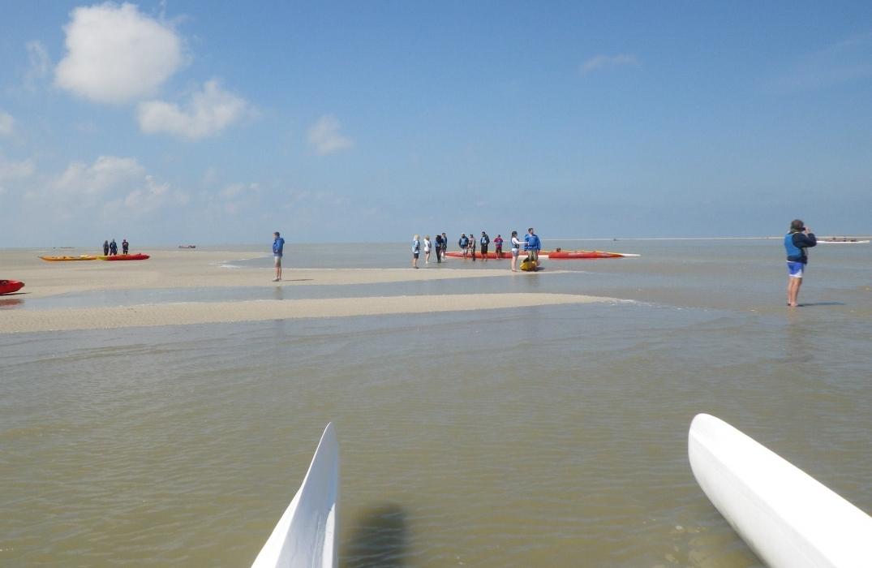 kayakbaiedesphoques_somme_picardie