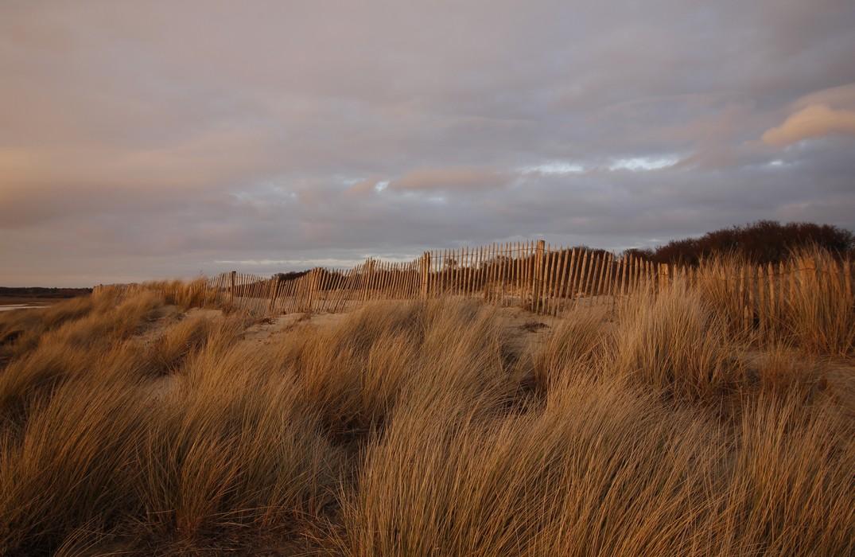 BaiedeSommeExploration-Dunes