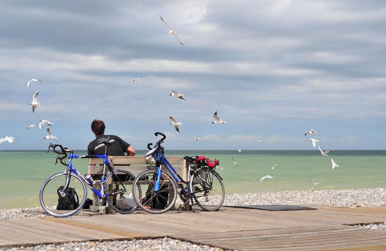 vélo-cycliste-mouette-chemin-planche_Cayeux-sur-Mer<Somme<Picardie