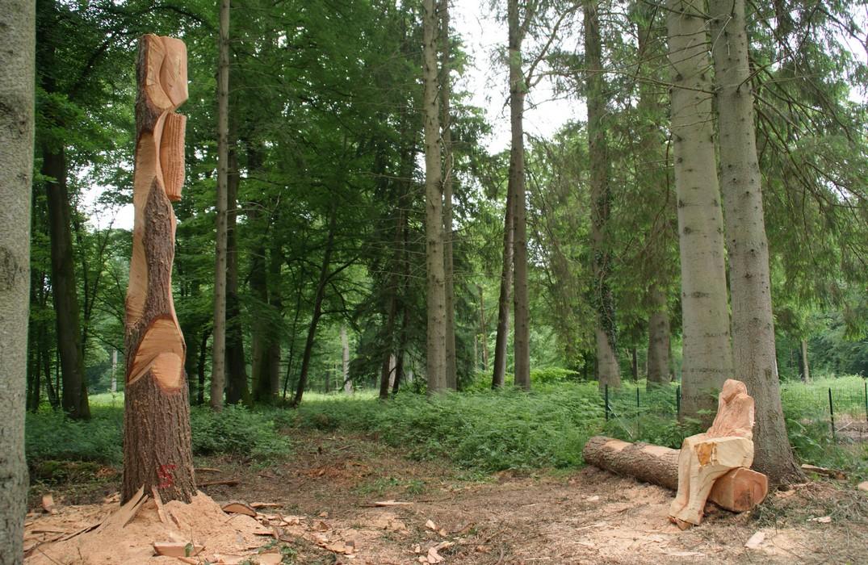 Crécy-en-Ponthieu_forêt_Nadaud-Guilloton©YLB-BS3V