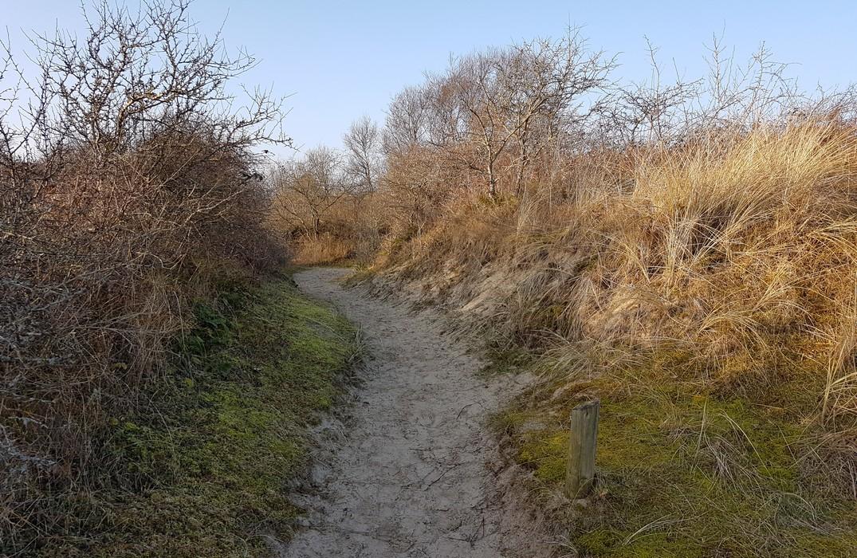 Fort-Mahon-Plage_rando-dune-de-l'authie©SommeTourisme-DM