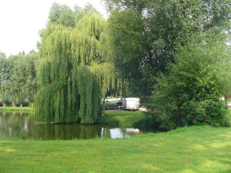 Le Marais_lac2_Noyelles Sur Mers_Somme_Picardie
