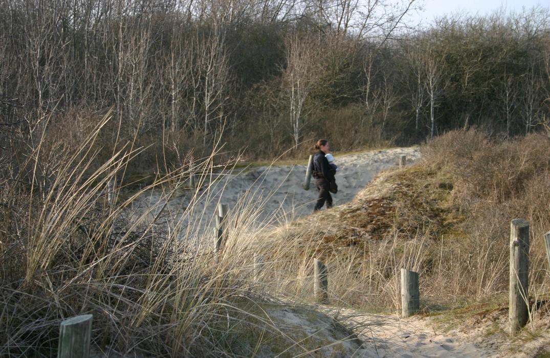 Dune de l'Authie