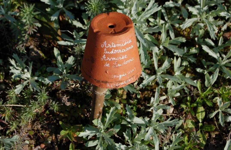 Herbarium des remparts