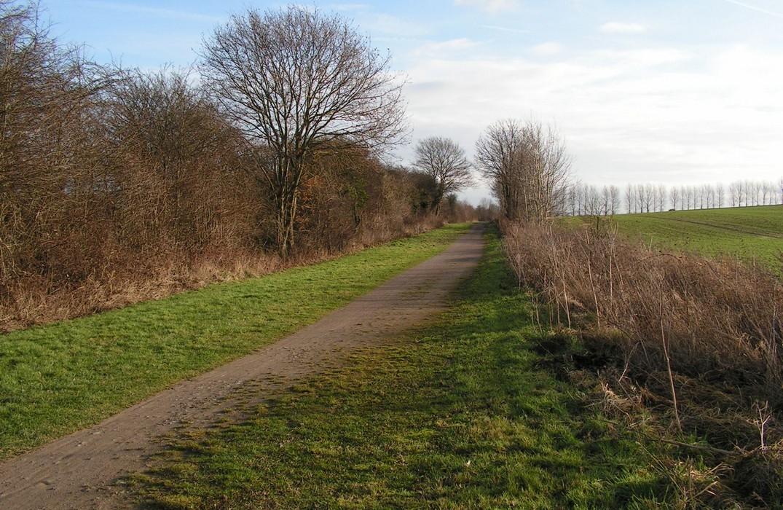 la-traverse-du-ponthieu_vue-chemin<Saint-Riquier<Somme<Picardie