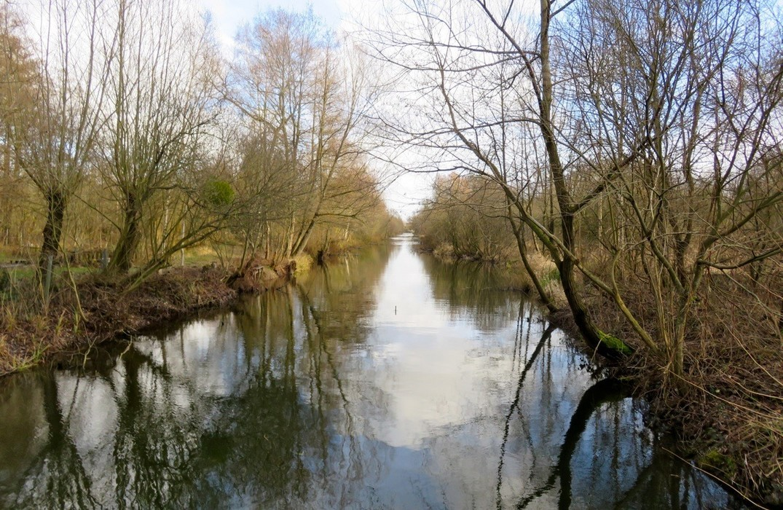 canal©ADRT80-MTestu